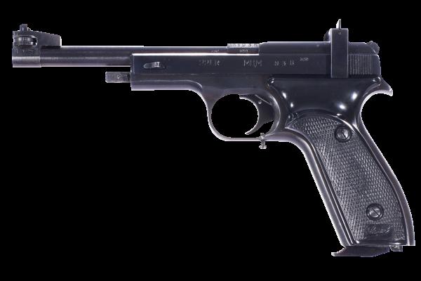 MCM22LR